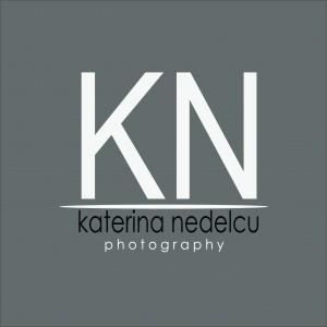 logo-KN -gri-1jpg